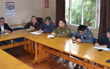Se activa Comité de Emergencia Comuna de Lonquimay