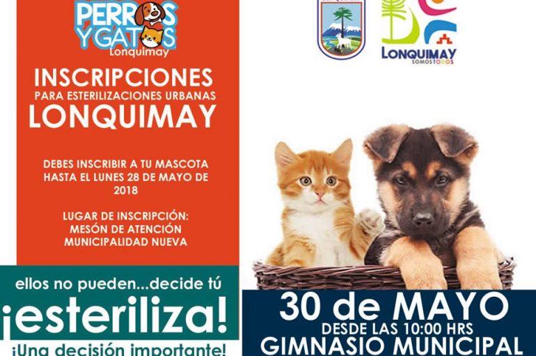 Vecinos y vecinas: ya tenemos fecha de esterilización para sus mascotas