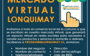 [MERCADO VIRTUAL LONQUIMAY]