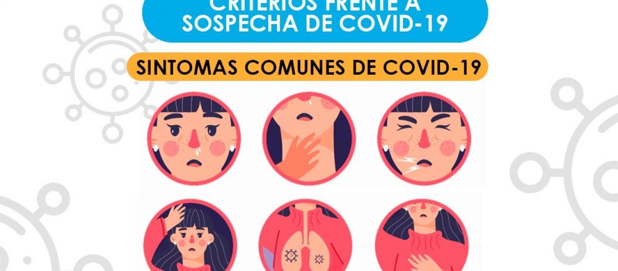 SÍNTOMAS, TIPOS DE CASOS Y PASOS A SEGUIR EN RELACIÓN CON EL COVID 19.