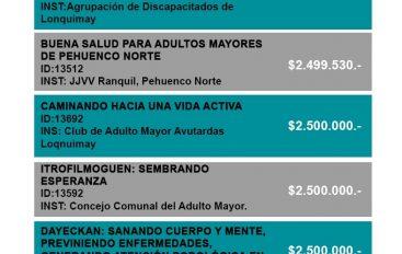 ORGANIZACIONES COMUNITARIAS DE LONQUIMAY GANAN PROYECTOS FNDR 6%